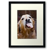 Clean that nose Framed Print
