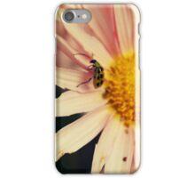 Itsy, bitsy, teenie, weenie, yellow polka-dot bug.... iPhone Case/Skin
