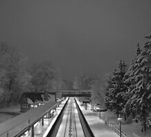 Scarsdale train station. by Daniel Sorine
