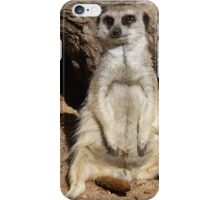 Resting Meerkat  iPhone Case/Skin
