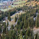 Ostrachtal - Algau - Germany by Arie Koene