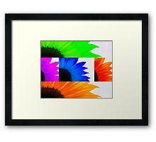 Sunflower Interrupted Framed Print