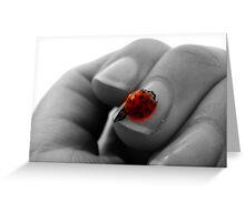 Ladybug, Ladybug fly away home! Greeting Card