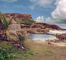 "Puerto Rico,"" El Moro"" Atlantic view by Jerry Clitty"