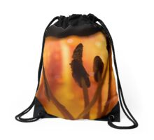 Guardians of Fire Drawstring Bag