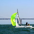 Sailboat and Bay Bridge by Peggy Berger