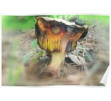 Freaky Fungus Poster