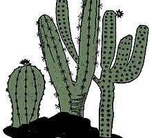 Cactus Vintage Art by toshibung