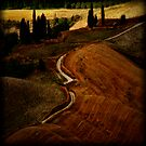 The Road by Mary Ann Reilly