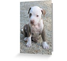 Dottie Greeting Card