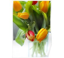 Tulips in a glass vase Poster