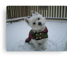 Winter Winnie Canvas Print
