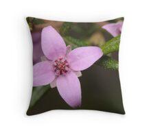 Single Boronia Flower Throw Pillow