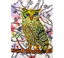Yellow Owl Photographic Print