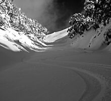 First Tracks by Thomas Foreman