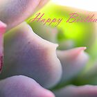 Happy Birthday - Soft Mauve Greeting Card by Susan Brown