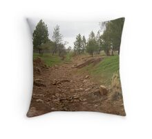 dry creek bed #2 Throw Pillow