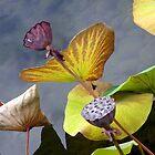 Chinese Garden - Portland, Oregon by Kathleen Conklin