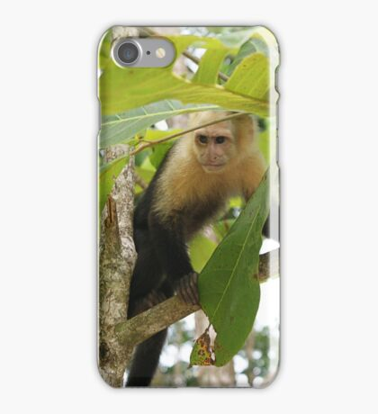 Capuchin Monkey iPhone Case/Skin