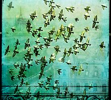 Birds Over Paris by wolfandbird