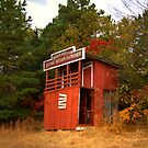 Double Decker Outhouse by Lisa G. Putman