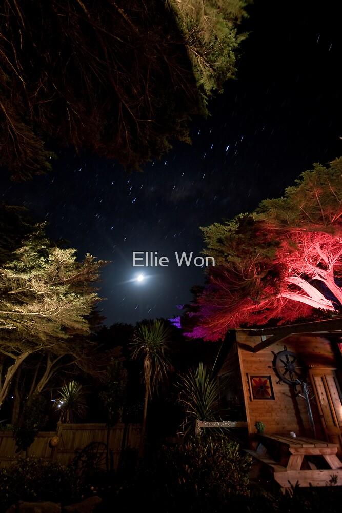 Night lights by Ellie Won