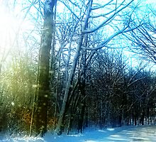 December Road by Pipewrench67