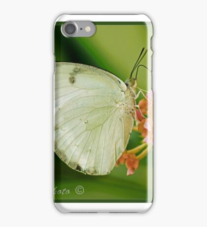 Large White Butterfly Asia (I) iPhone Case/Skin