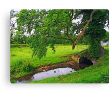 Shade and Water Canvas Print