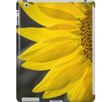 Beautiful Sunflower Closeup iPad Case/Skin