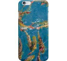 Fancy carp fish iPhone Case/Skin