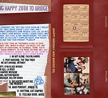Bridget's 20th inner cover album by VisualZoo