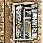 ANCIENT SHUTTERS - NEW WINDOW - CURRENT REFLECTION by Thomas Barker-Detwiler