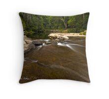 The Weir, Kangaroo Valley, NSW Throw Pillow