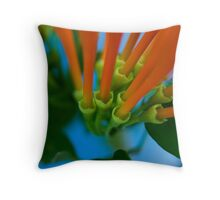 Spring Colour Throw Pillow