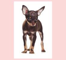 Brown Puppy Toy Terrier Kids Clothes