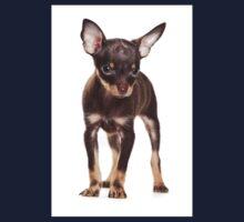 Brown Puppy Toy Terrier Kids Tee