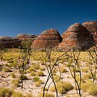 Northern Australia by Stephen Colquitt