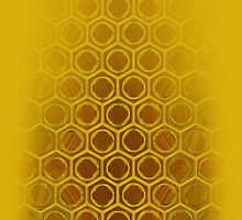 honeycomb by PHts