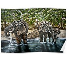 """""""Thirsty Elephants"""" - Oil Painting Poster"""