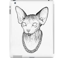 Street Cat iPad Case/Skin