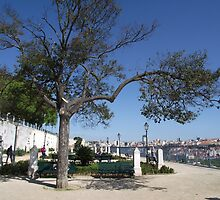 Overlooking Lisbon by trish725