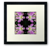 Purple Orchid Abstract Framed Print