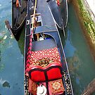 Venice by Sandra Pearson