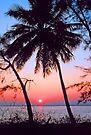 SUNSET,KEY BISCAYNE FLORIDA by Chuck Wickham