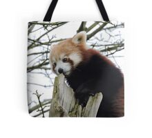 We Rise By Lifting Others Tote Bag
