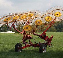 Lets' Make Hay ! by shadyuk
