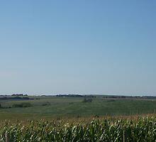 Nebraska Landscape by Jamie Regier