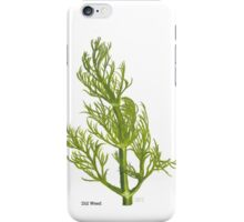 Dill Painting iPhone Case/Skin