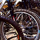 Lined up Bikes by MaluC